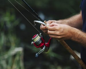 Stor fiskegrej shop online